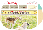 Faithful Dog 様